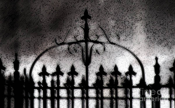 Photograph - Gated by Linda Shafer