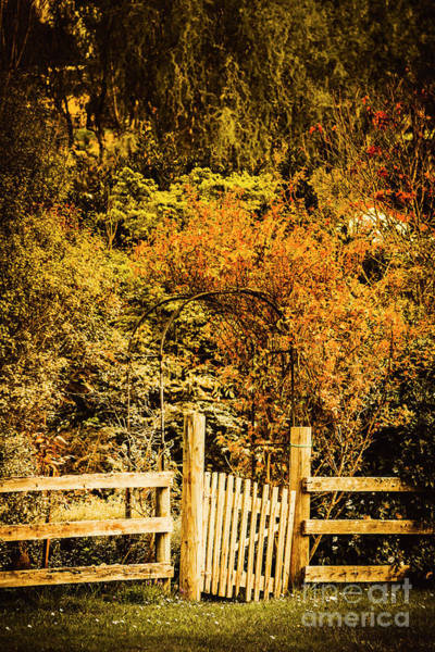 Wood Planks Photograph - Gates In Fall by Jorgo Photography - Wall Art Gallery