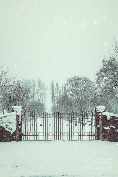 Wall Art - Photograph - Gates In Snow by Amanda Elwell