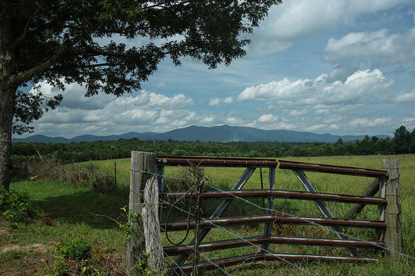 Photograph - Gateway To The Mountains by Jemmy Archer