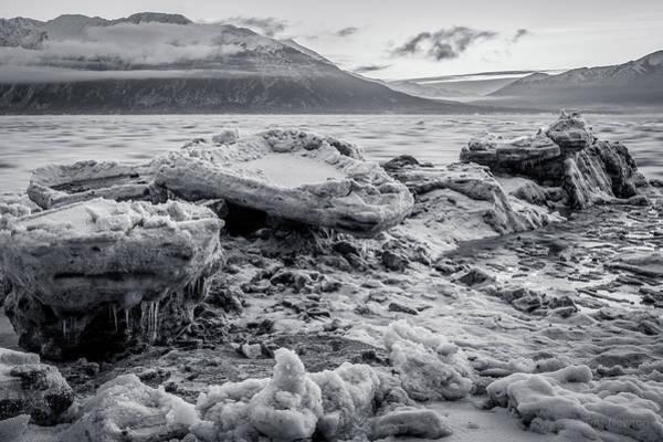 Photograph - Gathering Bergs by Tim Newton