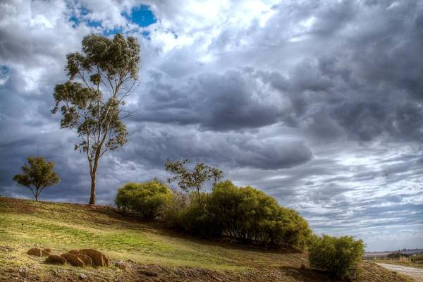 Photograph - Gathering Storm Clouds by Jenny Setchell