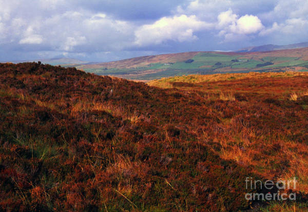 Photograph - Gathering Storm Sperrin Mountains by Thomas R Fletcher