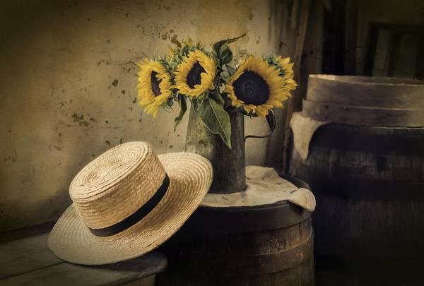 Photograph - Gathering Sunshine by Robin-Lee Vieira