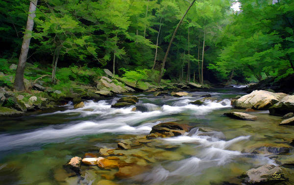 Photograph - Gatlinburg Stream by Sam Davis Johnson