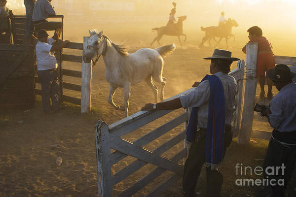 Photograph - Gaucho's At The Gate by Craig J Satterlee