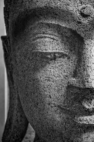 Photograph - Gautama Buddha by Pablo Lopez