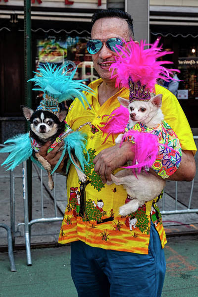 Lgbt Photograph - Gay Pride Parade Nyc 6_24_2018 Marcher With His Dogs by Robert Ullmann