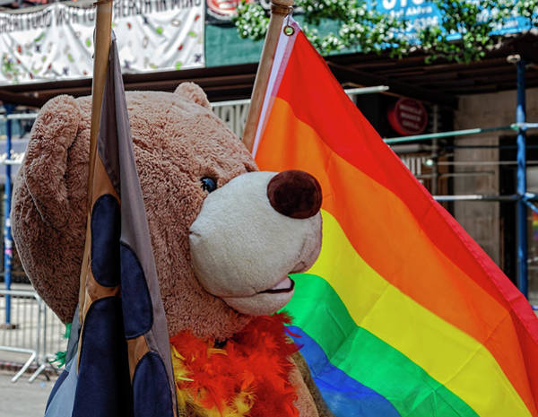Gay Pride Flag Photograph - Gay Pride Parade Nyc 6_24_2018 Pride Flag And Teddy Bear by Robert Ullmann