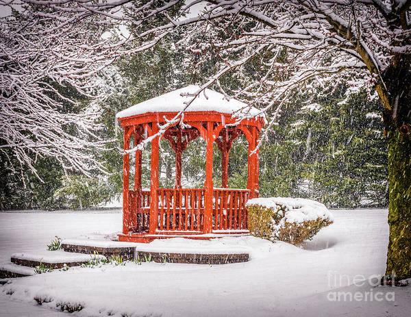 Photograph - Gazebo In The Snow by Nick Zelinsky