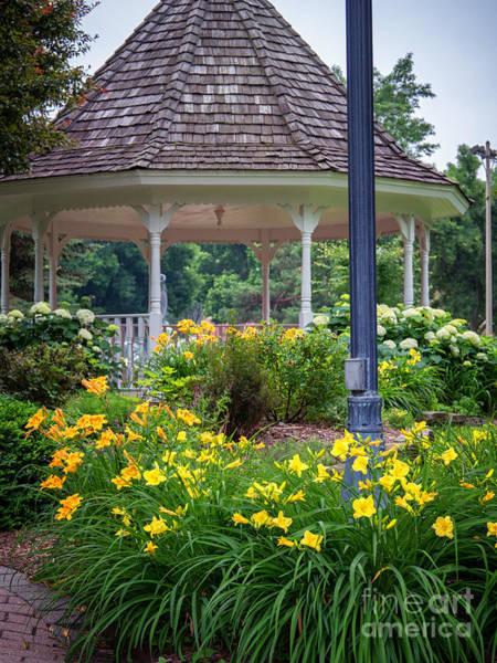 Photograph - Gazebo With Lilies by Kari Yearous