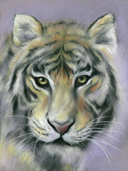 Pastel - Gazing Tiger by MM Anderson