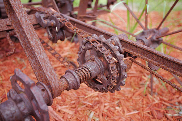 Photograph - Gears by Gordon Elwell