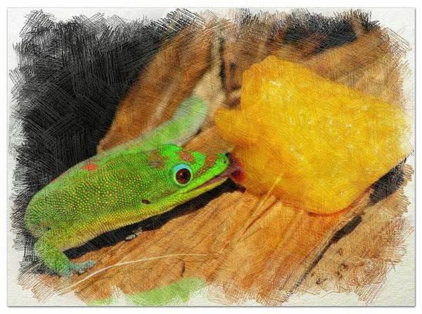 Mixed Media - Gecko Enjoying Peaches by Pamela Walton