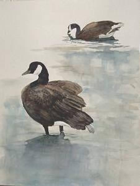 Painting - Geese 2 by Diane Ziemski