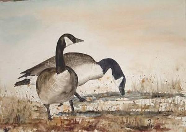 Painting - Geese 4 by Diane Ziemski