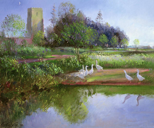 Water Fowl Painting - Geese At Sundown by Timothy Easton