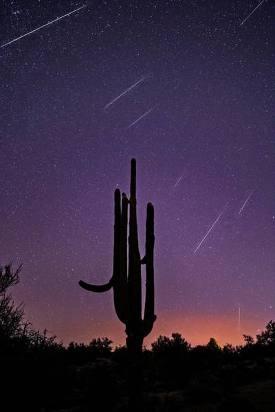 Photograph - Geminid Meteor Shower #1, 2017 by James Capo