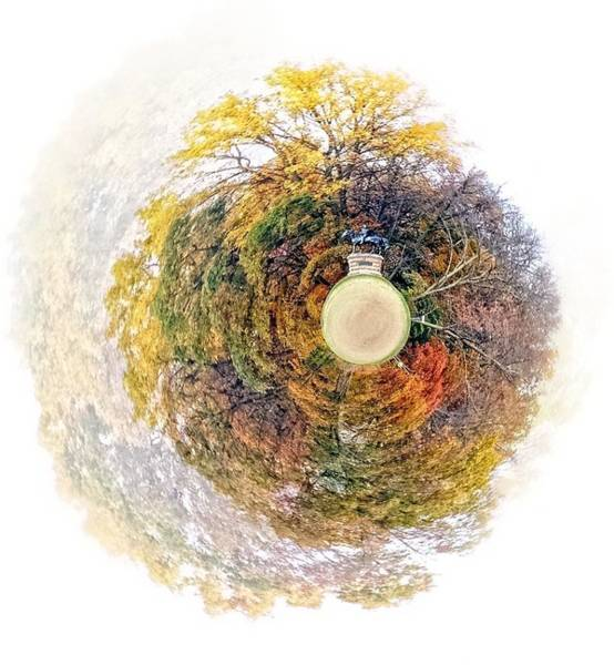 Photograph - General In A Sphere by Alice Gipson