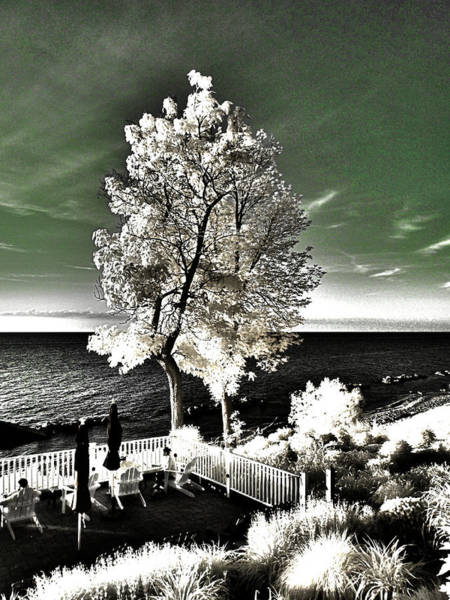 Lake Geneva Photograph - Geneva On The Lake, Ohio by Bob LaForce