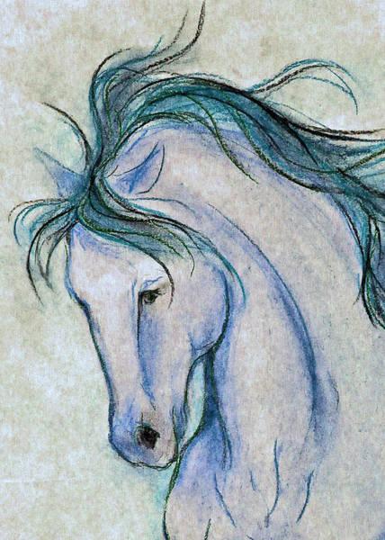 Warmbloods Drawing - Gentleman In Blue by Jennifer Fosgate