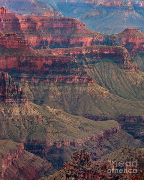 Photograph - Geological Formations North Rim Grand Canyon National Park Arizona by Dave Welling