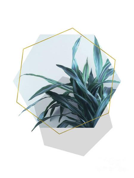 Geometric Jungle Art Print