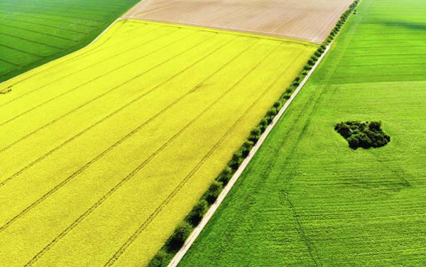Photograph - Geometric Landscape 01 Aerial View by Matthias Hauser