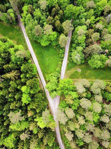 Photograph - Geometric Landscape 02 Forest Path by Matthias Hauser
