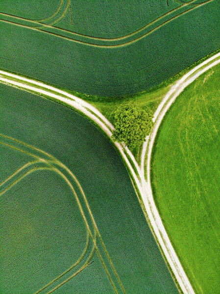 Photograph - Geometric Landscape 07 Lines And Green Textures by Matthias Hauser