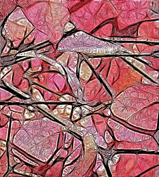 Geometry Of Leaves In Pink Art Print
