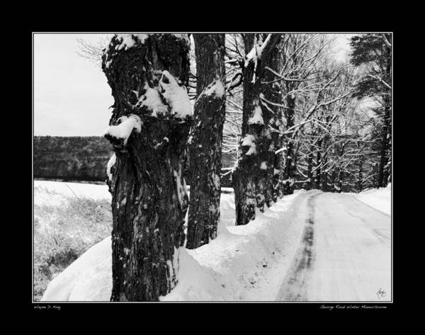 Photograph - George Road Winter Monochrome Poster by Wayne King
