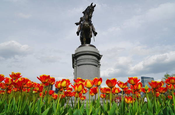 Photograph - George Washington by Christopher Brown