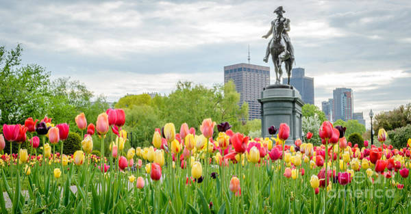Wall Art - Photograph - George Washington Statue Boston Public Garden by Mike Ste Marie