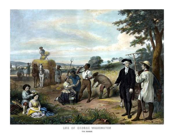 Wall Art - Painting - George Washington The Farmer by War Is Hell Store