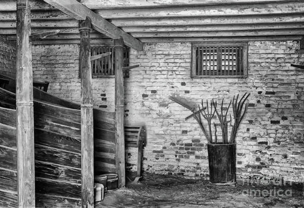 Photograph - George's Horse Barn Black And White by Karen Adams