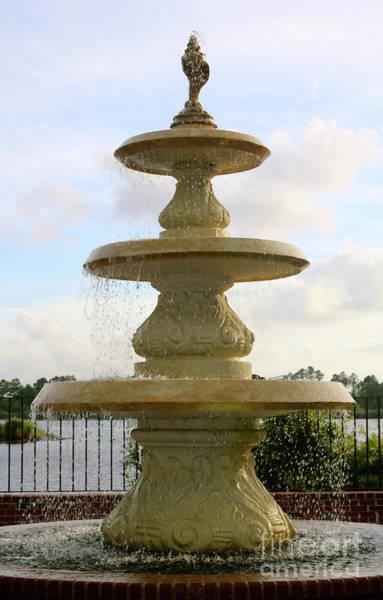 Photograph - Georgetown Shell Fountain by Carol Groenen