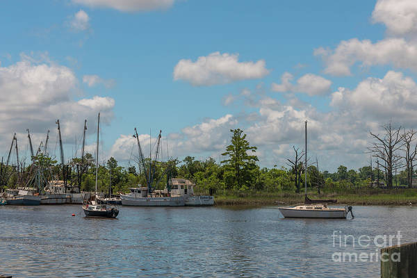 Photograph - Georgetown Sky Fleet by Dale Powell