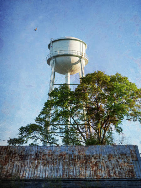 Photograph - Georgia Water Tower by Whitney Leigh Carlson