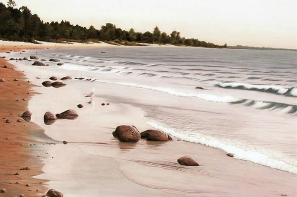 Georgian Bay Beach Art Print