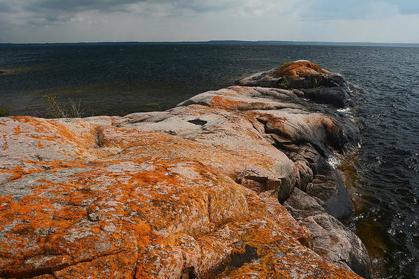 Photograph - Georgian Bay Rocks Lichen-3675 by Steve Somerville