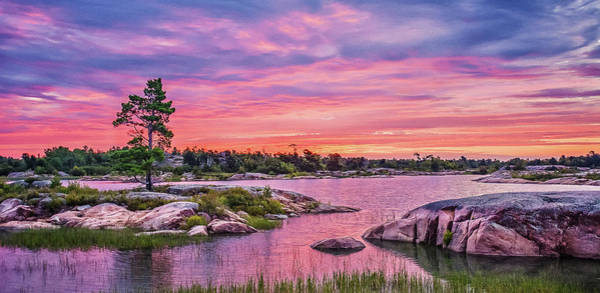 Photograph - Georgian Bay Sunrise by Tracy Munson