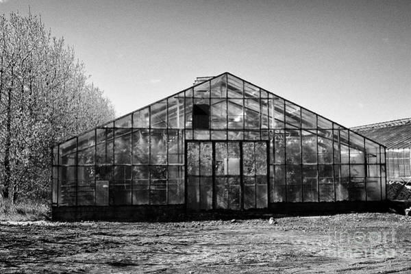 Wall Art - Photograph - geothermally powered greenhouses in hveragerdi Iceland by Joe Fox