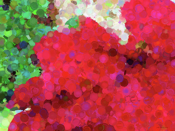 Digital Art - Geranium Circles Abstract by Judi Suni Hall
