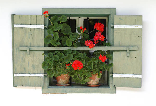 Red Geraniums Wall Art - Photograph - Geranium Window by Frank Tschakert