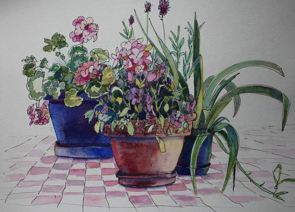 Painting - Geraniums And Pansies by Ruth Kamenev