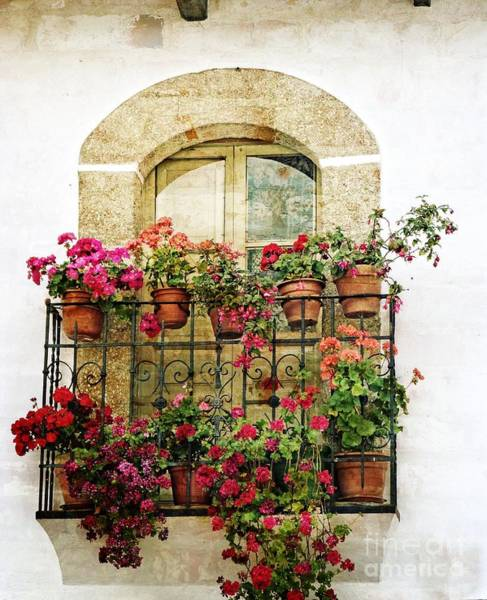 Photograph - Geraniums On Balcony by Dee Flouton