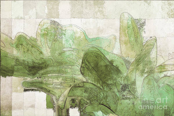Wall Art - Digital Art - Gerberie - 30gr by Variance Collections