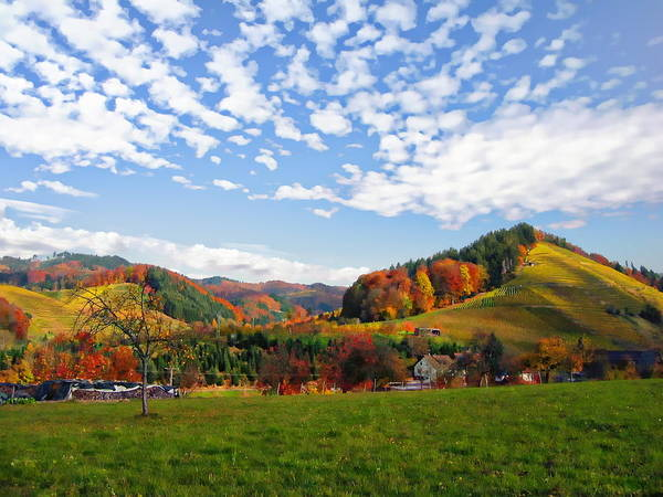 Photograph - German Landscape In Autumn  by Anthony Dezenzio