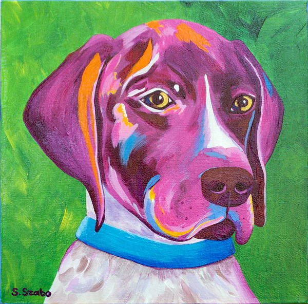 German Pointer Painting - German Pointer - Bella by Susan Szabo